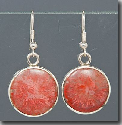 Agatized Utah Red Horn Coral Silver Earrings