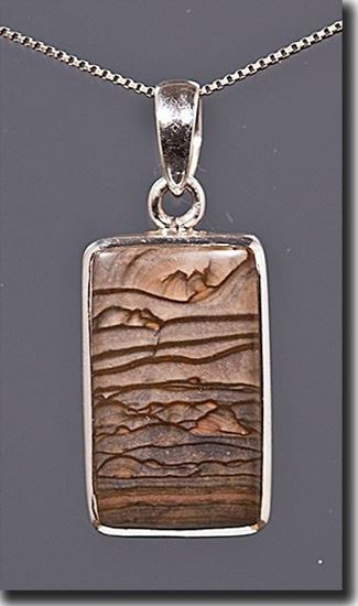 Oregon Biggs Picture Jasper Silver Pendant