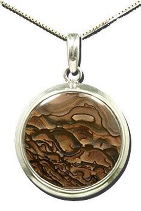 Oregon Deschutes Picture Jasper Silver Pendant