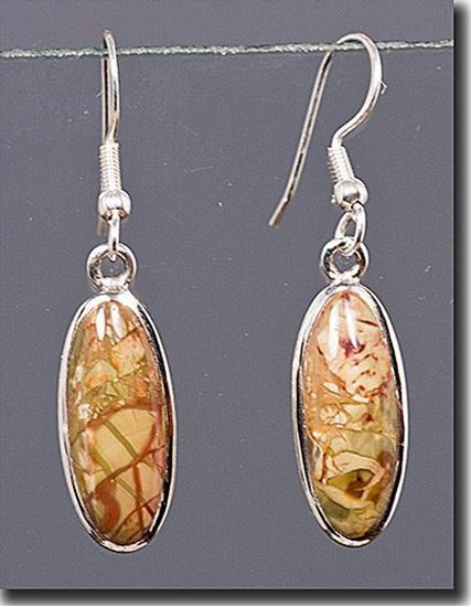 Oregon Morrisonite Jasper Silver Earrings