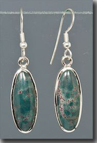 Bloodstone Silver Earrings