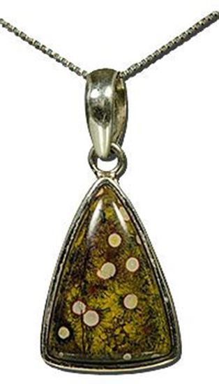 California Morgan Hill Poppy Jasper Silver Pendant