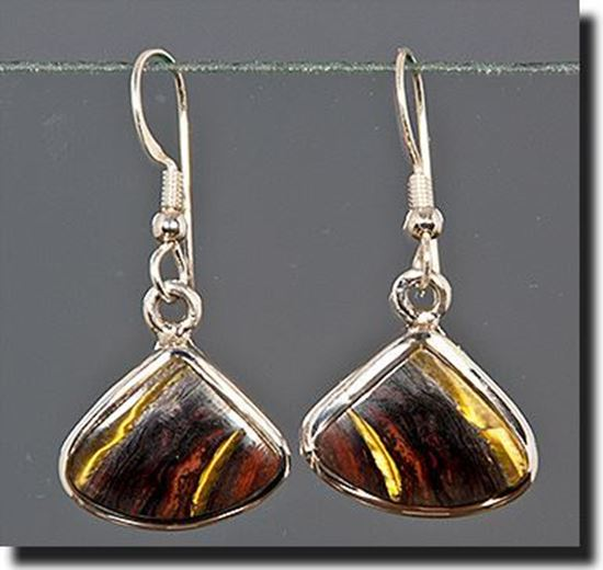 Australian Tiger Iron Silver Earrings