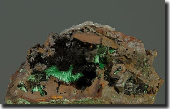 Duftite & Tenorite Mineral Specimen